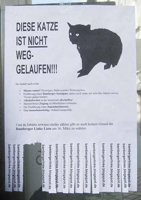 BaLi Katze. Foto: Erich Weiß