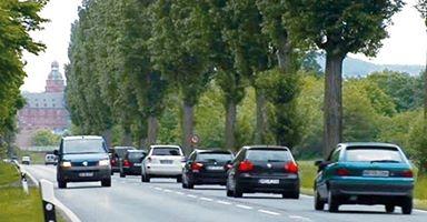 Pappelallee Foto: Bürgerbegehren Keine Stadtautobahn B26