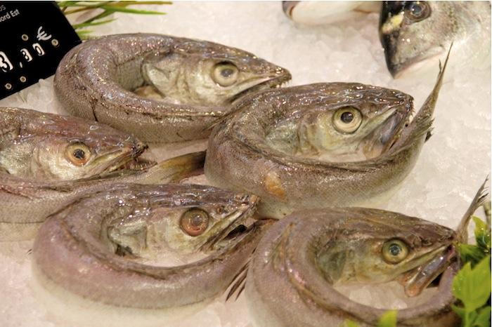 Hecht, schon geschuppt, für Hechtklößchen oder Soufflé de Brochets, Markthallen Roanne. Foto: Monika Schau