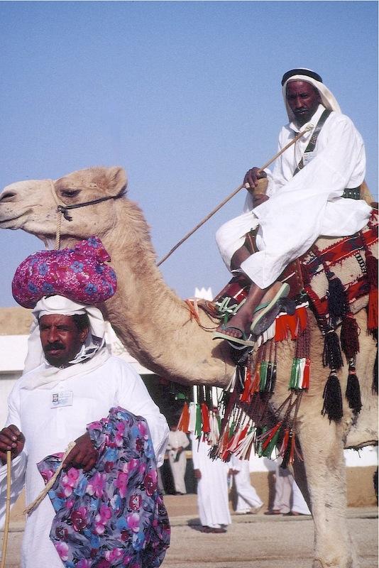 Auf den Weg zum Kamelrennen