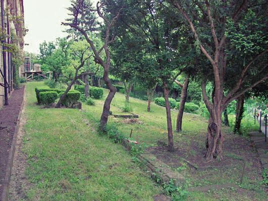Ausblick von oberste Terrassenebene über Garten