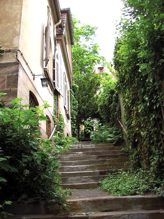 Abb ehemaliger Aufgang zur Villa bis zum Klostereingang von Süden (Sem.arbeit, S.18 rechts), Zustand 2008