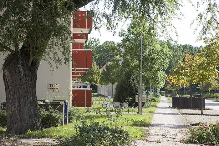 Erlenstraße. Foto: Erich Weiß