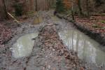 Bodenschäden Forstbetrieb Ebrach. Foto: Verein Nationalpark Nordsteigerwald