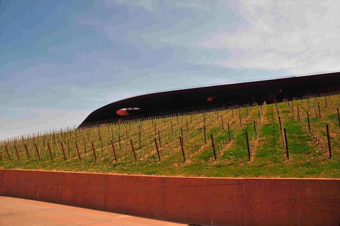 Auffahrt zum Weingut