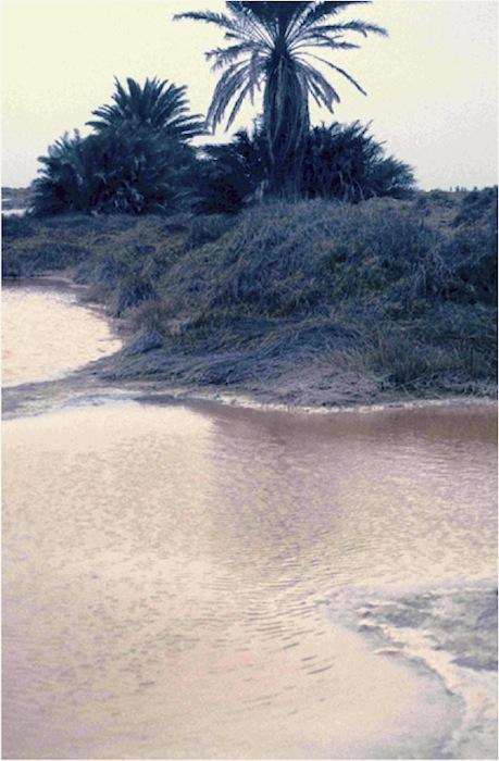 Überkonzentration von Salz im Wasser