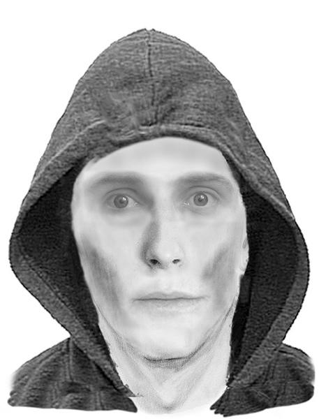 Vermutlicher Einbrecher. Bild Polizei