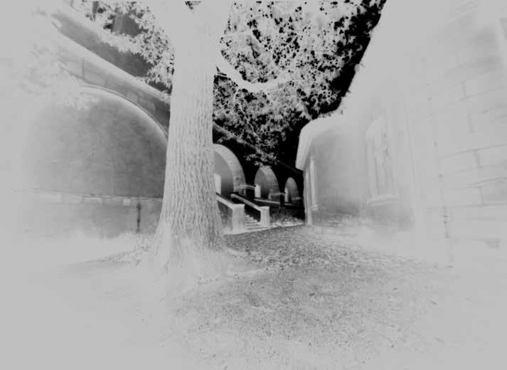 Rosengarten. Foto: Günter Derleth