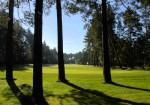 GC Hauptsmoorwald Bahn 8. Foto: Golfclub Hauptsmoorwald, 2015